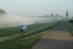 Nebel über der Neuen Luppe. Foto: Ralf Julke