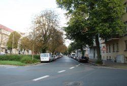 Nicht schutzwürdig: Kastanien zwischen Kommandant-Prendel-Allee und Gletschersteinstraße. Foto: Ralf Julke