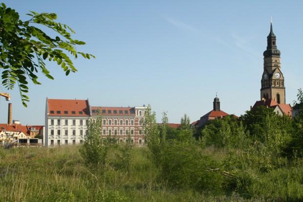 Dringend benötigte Fläche im Leipziger Westen: das Jahrtausendfeld. Foto: Ralf Julke