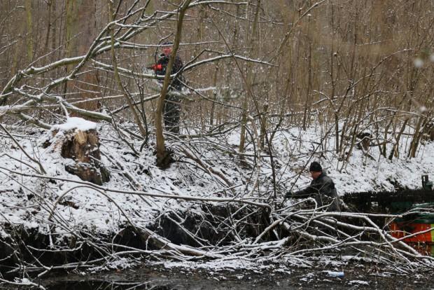 Eigentlich verboten: Totholzbeseitigung am Floßgraben im Januar 2015. Foto: Kanuverband achsen