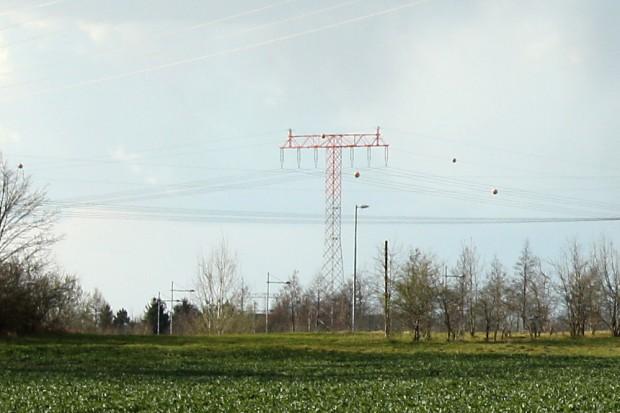 Die Freileitung westlich des BMW-Werks soll jetzt unter die Erde. Foto: Ralf Julke