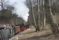 Dampflokomotive der Parkeisenbahn Auensee Foto:Ernst-Ulrich Kneitschel