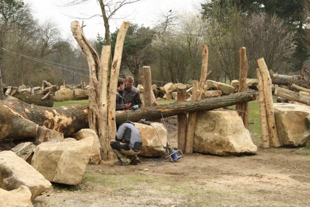 Kleine Tiere können hier - wenn sie mutig sind - ins Nashorngehege wechseln. Foto: Ralf Julke