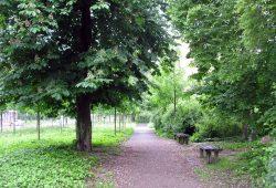 Spazierende Gedanken im grünen Tale. Foto: L-IZ.de