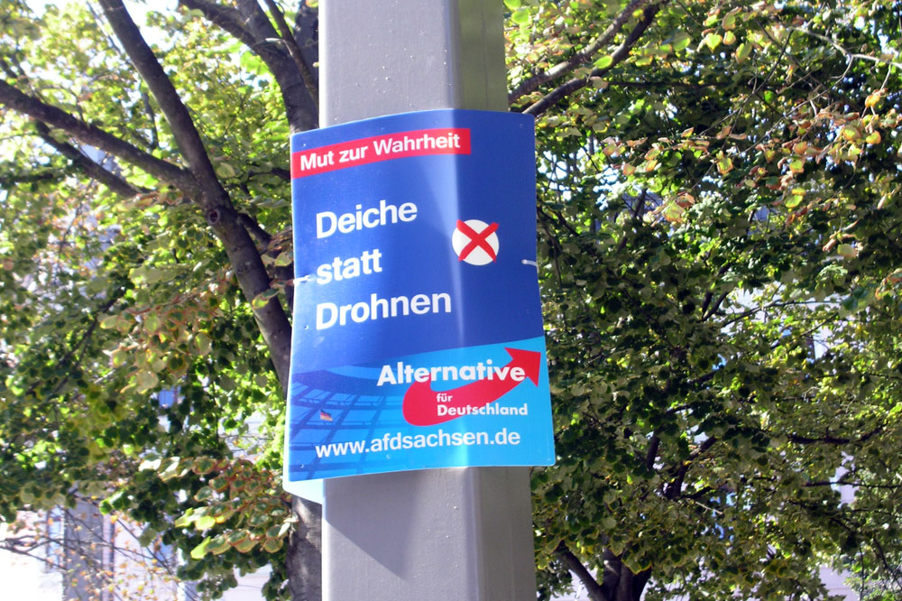 Auch im Mai hingen auf einmal AfD-Plakate in Leipzig - auch da war keine Wahlkampfzeit. Foto: L-IZ.de