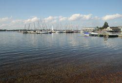 Für Segler schon jetzt ein Paradies - der Cospudener See. Foto: Ralf Julke