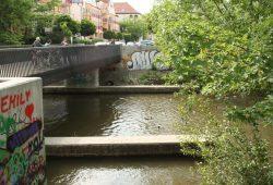 Beliebte Fütterungsstelle: Limburger Steg in Schleußig. Foto: Ralf Julke