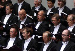 Der MDR Rundfunkchor. Foto: Alexander Böhm