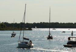 Segelboote auf dem Cospudener See. Foto: Ralf Julke