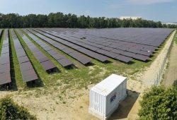 Immer mehr Bürgerkraftwerke entstehen in Sachsen: Hier eine Solverde-Anlage in Bad Lausick. Foto: Matthias Weidemann