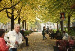 Auch an Herbsttagen beliebt: Bänke an der Thomaswiese. Foto: Ralf Julke