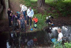 Wasserexkursion Foto: Ludo Van den Bogaert
