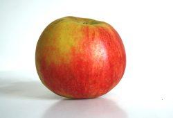 Steigende Preise im Laden: Jahr für Jahr beißen auch die Sachsen in den sauren Apfel. Foto: Ralf Julke
