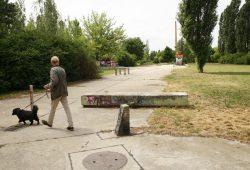 Rustikale Grünanlage an der Ecke Rolf-Axen-Straße/Baumannstraße. Foto: Ralf Julke