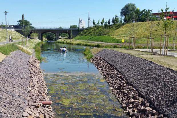 Paradies für Wasserpflanzen: der kleine Wurmfortsatz des neuen Kanalstück mit Blick zur Luisenbrücke. Foto: Marko Hofmann