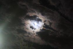 Der Mond ist aufgegangen ... Foto: Ernst-Ulrich Kneitschel