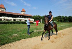 Alexander Leip eröffnet das Training für die insgesamt 13 vor Ort betreuten Pferde. Der vierjährige Wallach Fritz darf die Sandbahn als Erster testen. Foto: Dieter Grundmann/Westend-PR