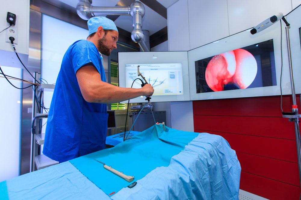 Intelligenter OP: ICCAS-Ingenieur Richard Bieck demonstriert anhand eines 3D-Modells HNO-Chirurgie der Zukunft. Foto: Swen Reichhold