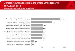 Die gemeldeten Arbeitsstellen in Leipzig im August 2015. Grafik: Arbeitsagentur Leipzig