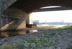 Die Elbe am 13. August 2015. Foto: GRÜNE Landtagsfraktion Sachsen
