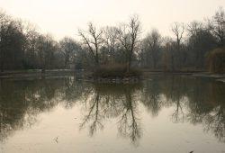 Inselteich im Clara-Zetkin-Park im trüben Winter 2014 / 2015. Foto: Ralf Julke