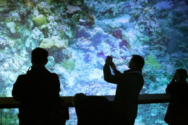 Wie fängt man Asisis großes Riff-Panorama mit einem kleinen Smartphone ein? Foto: Ralf Julke