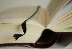 In Leipzig werden jedes Jahr um die 1.000 Buchtitel herausgebracht. Foto: Ralf Julke