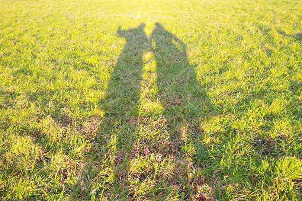 Dem Leben entfremdet - Sind wir nur noch Schatten unserer selbst? Foto: Daniel Thalheim