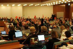 Vor der Abstimmung zu den Maßnahmen rings um das Thema Asyl in Leipzig kam es am Mittwoch zu einer rund 1,5 - stündigen Aussprache im Ratssaal. Foto: L-IZ.de