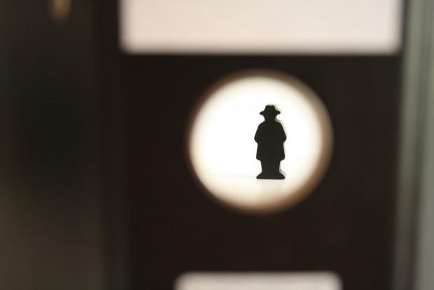 Ein Verfassungsschutz im Sammeleifer. Foto: Ralf Julke