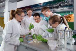 """BIOTechnikum_Praktikum: Einblicke in ein chancenreiches Berufsfeld: Bei den Praktika der BMBF-Initiative """"BIOTechnikum"""" können sich die Teilnehmer unter Anleitung erfahrener Wissenschaftler selbst als Forscher betätigen und so ein Stück biotechnologischen Forschungsalltag kennenlernen. Foto: Initiative """"BIOTechnikum: Erlebnis Forschung - Gesundheit, Ernährung, Umwelt"""""""