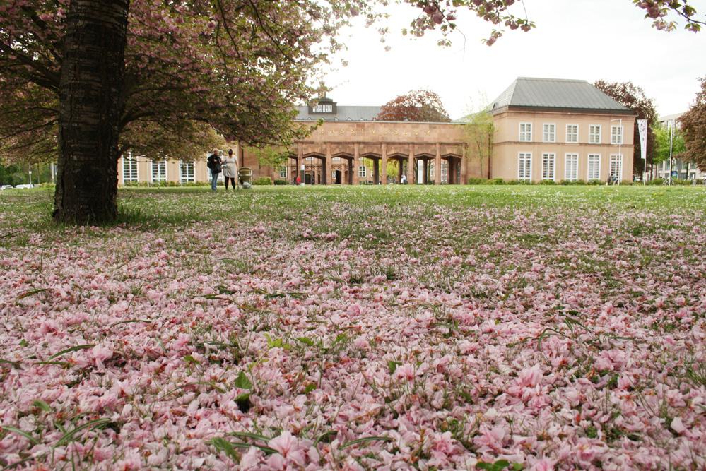 Der Johannisplatz im Frühjahr: Bis 1943 stand hier das Luther-Melanchthon-Denkmal. Foto: Ralf Julke