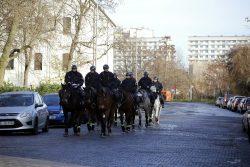 1120 Auch Pferde sind im Einsatz