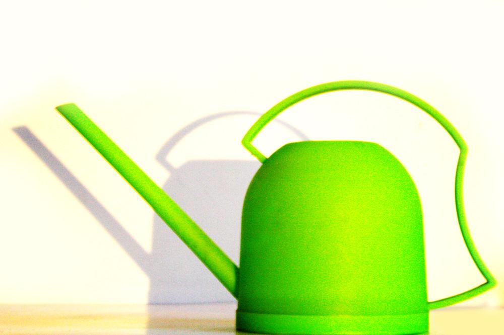 Eine Gießkanne - eher das kleine, sächsische Modell. Foto: Ralf Julke