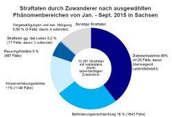 Anteile der von Zuwanderern begangenen Straftaten. Grafik: Freistaat Sachsen / SMI