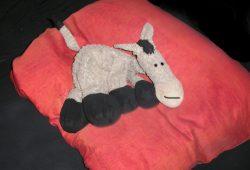 Manche weichen auch lieber ganz aus und holen sich gleich einen Esel ins Bett. Foto: L-IZ.de