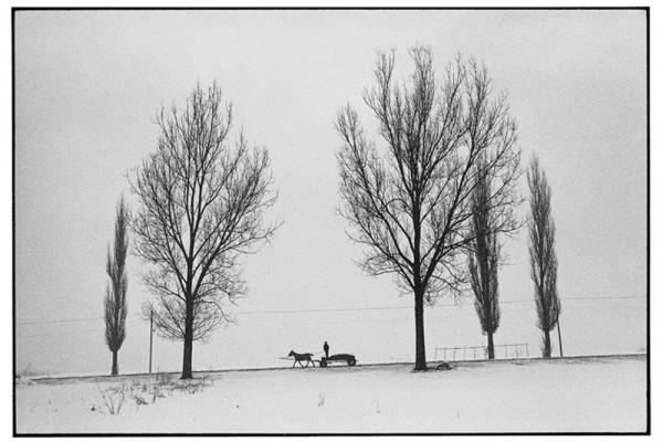 Vişeu de Sus. Foto: Axel Heller