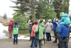 Zur Stunde der Wintervögel hatte der NABU-Regionalverband Leipzig Führungen angeboten. Daran nahmen insgesamt 79 kleine und große Naturfreunde teil und zählten 107 Vögel. Foto: René Sievert