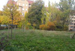 Vorher. Foto: BUND Leipzig