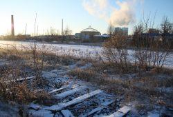 Blick über die nicht mehr genutzten Teile des Freiladebahnhofs. Foto: Ralf Julke