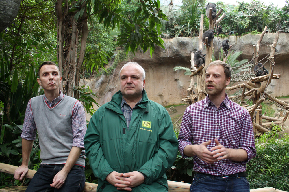 Alexander Loos, Dr. Jörg Junhold und Dr. Daniel Hanus vor der Schimpansenanlage im Pongoland. Foto: Ralf Julke