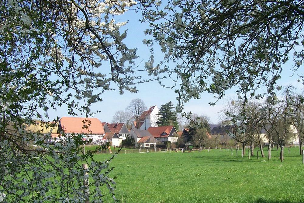 Frühlingserwachen in Höfgen. Foto: Markus Thieme