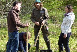 Baumpflanzaktion des Grünen Kreisverbands und von Claudia Maicher MdL zum Tag des Baumes. Foto: Bündnis 90/Die Grünen