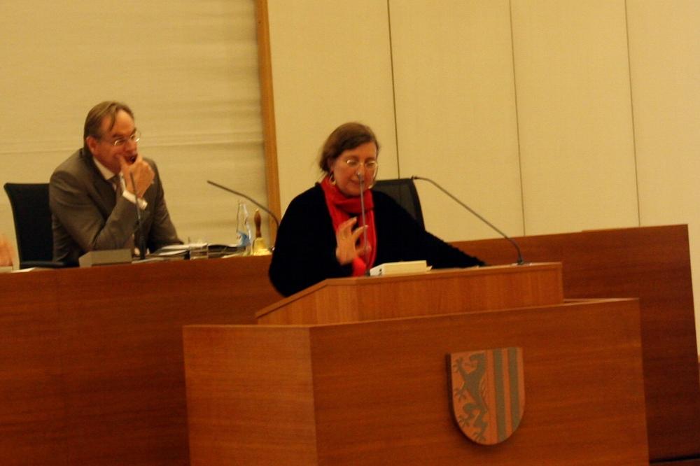 Schieflage in der Argumentation? Dorothee Dubrau musste am 7. April viel erklären. Foto: L-IZ.de