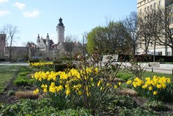 Leipzig braucht ein nachhaltiges Wachstumsprogramm. Foto: Ralf Julke