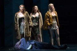Wellgunde (Sandra Maxheimer), Woglinde (Magdalena Hinterdobler), Flosshilde (Sandra Janke) & Siegfried (Thomas Mohr). Foto: Tom Schulze