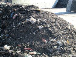 So sieht ein Komposthaufen im Kompostwerk Liehmena aus. Foto: Ökolöwe, Arbeitsgruppe Abfall & Recycling