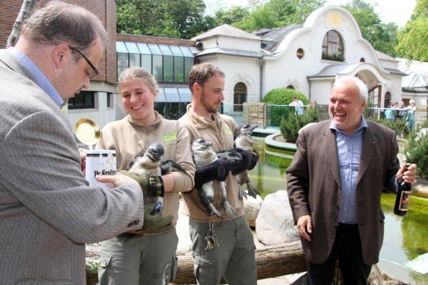 Pinguintaufe mit Joachim von Lentzke, Andrea Dennig, Marcel Alaze und Prof. Junhold. Foto: Zoo Leipzig