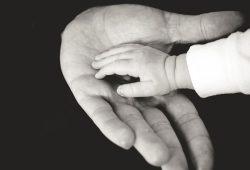 Rechte in Schwangerschaft und Elternzeit. Foto: Unsplash / GB