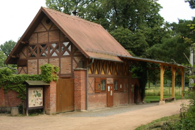 Auwaldstation Lützschena. Foto: Ralf Julke